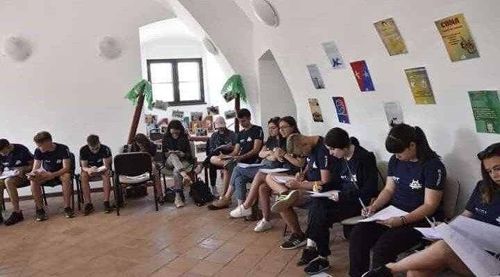 """Scoala de vara """"Orientarea si Gestiunea Carierei"""" propusa de ARDT Oradea"""